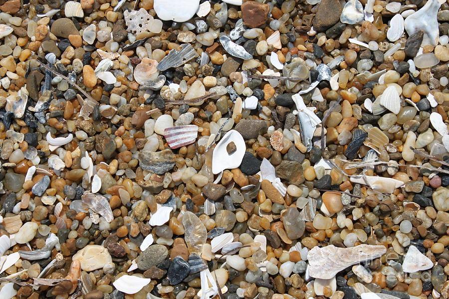 Beach Photograph - Sea Rocks by Marcie Daniels