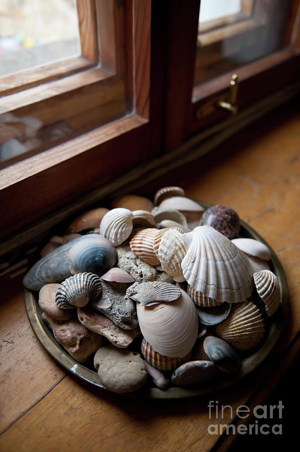 Shell Photograph - Sea Shells And Stones On Windowsill by Arletta Cwalina