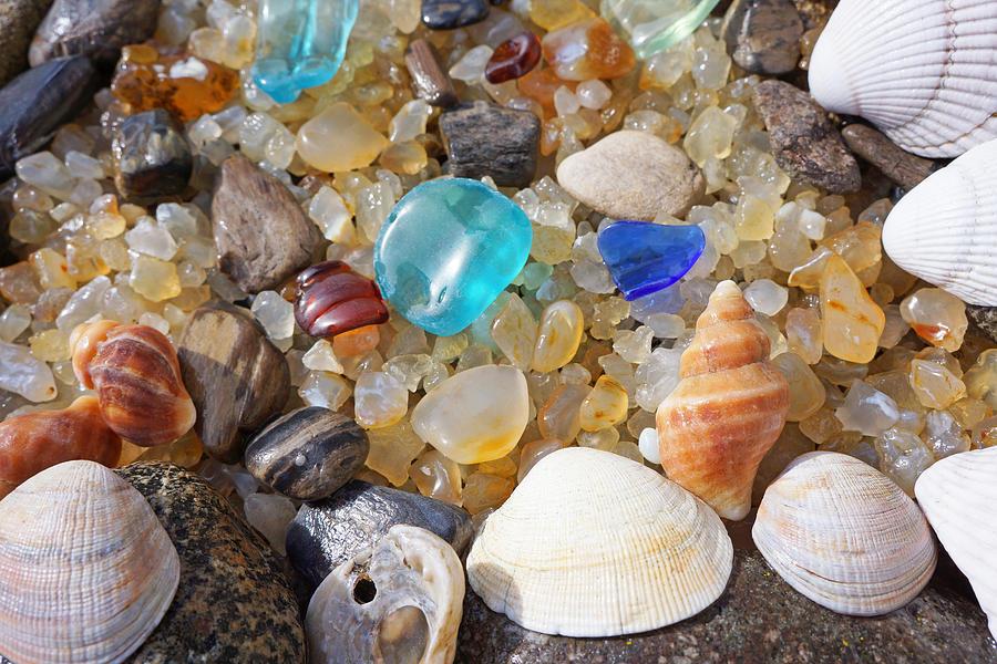 Sea Shells Art Prints Blue Seaglass Sea Glass Coastal Photograph
