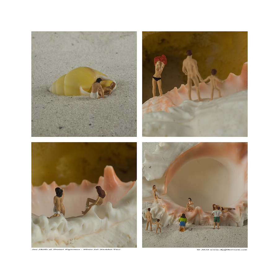 Preiser Photograph - Sea Shells With Preiser Figurines Number Two by Rolf Bertram