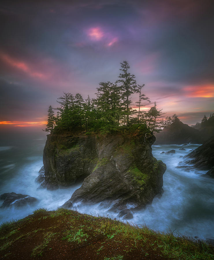 Sea Stack With Trees Of Oregon Coast Photograph