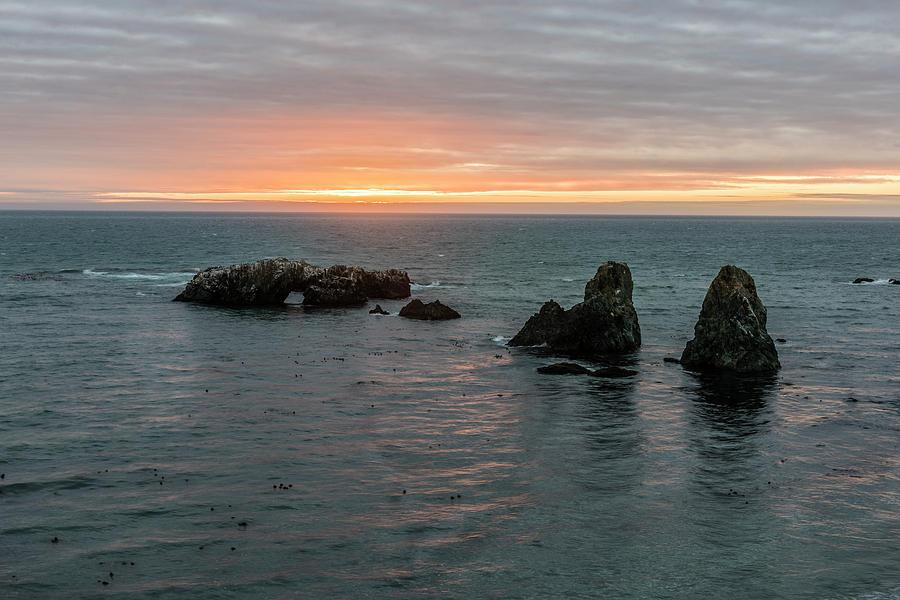 Sea Ranch Photograph - Sea Stacks In Sea Ranch by Jon Glaser