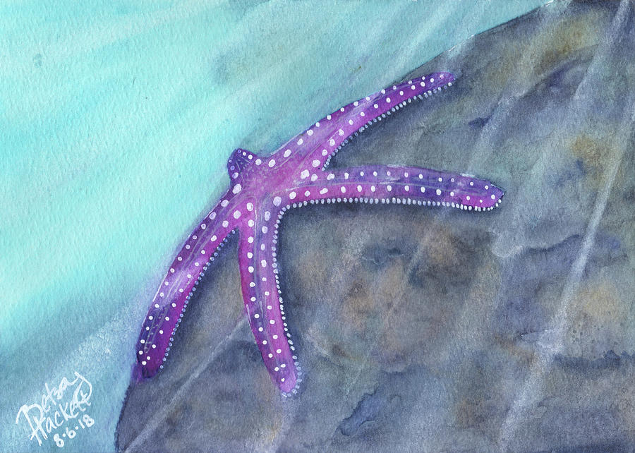 Sea Star Rays by Betsy Hackett