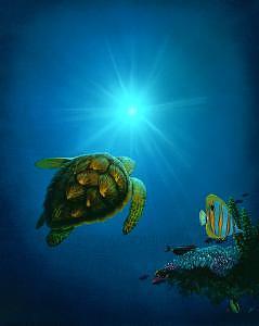 Turtle Painting - Sea The Light by Thomas Deir