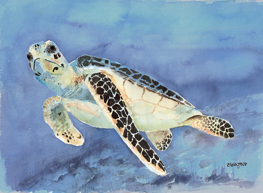Green Sea Turtle Painting - Sea Turtle by Arline Wagner
