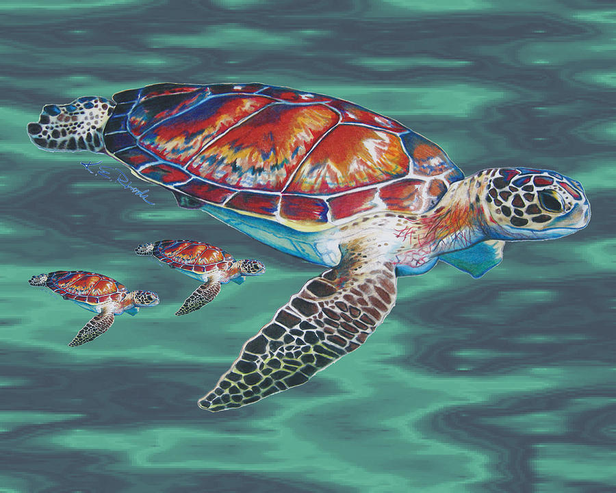 sea turtle family drawing by karen rhodes