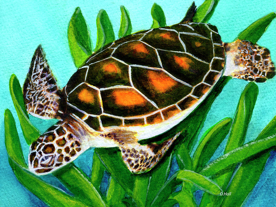 Honu Painting -  Sea Turtle Honu #352 by Donald k Hall
