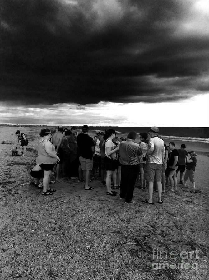Sea turtle release gathering  by WaLdEmAr BoRrErO