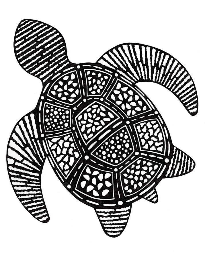 Sea Turtle Shapes by Brittany Dorris