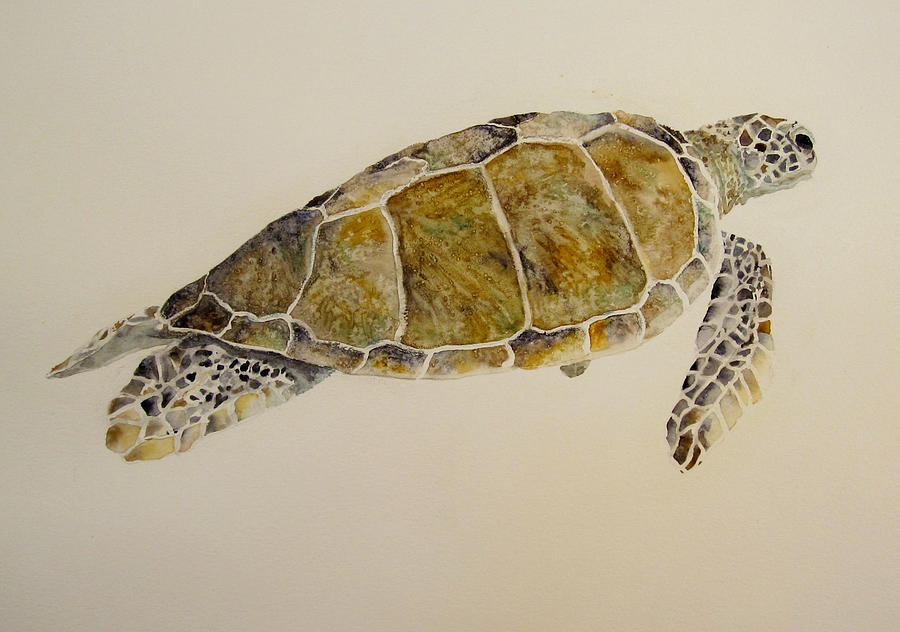 Turtle Painting - Sea Turtle by Theresa Higby