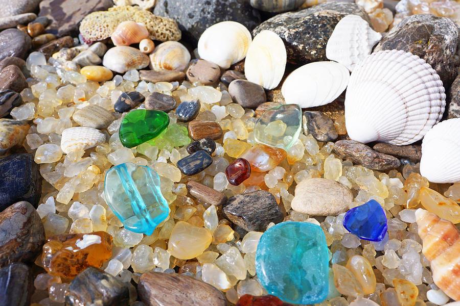 Seaglass Art Prints Sea Glass Shells Agates Photograph