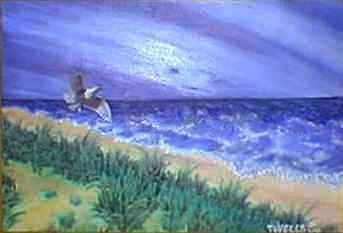 Seagull At Manzanita Beach Print by Tanna Lee M Wells