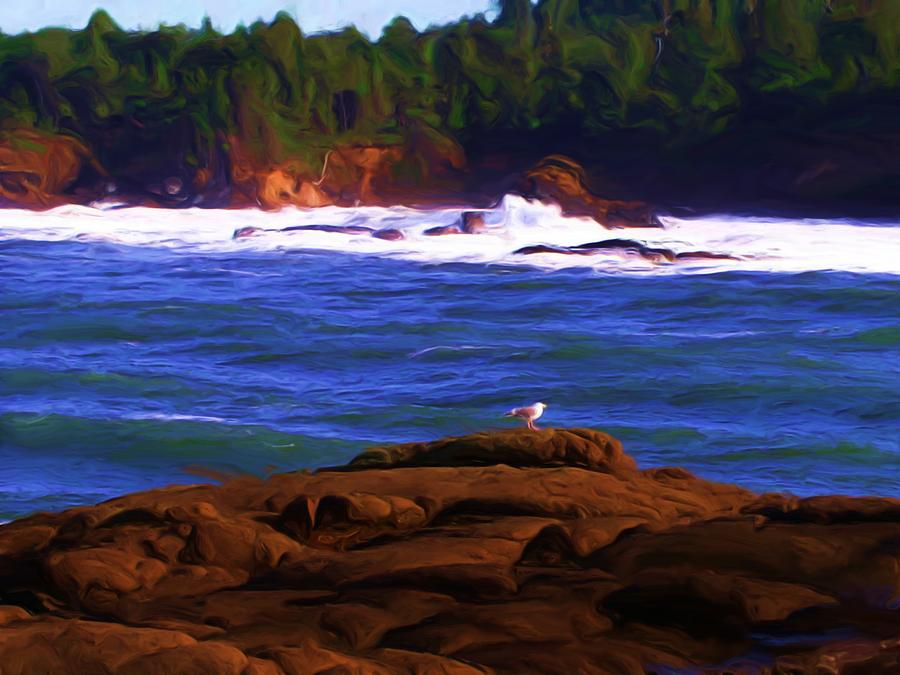 Seascape Painting - Seagull On Rock by Shelley Bain