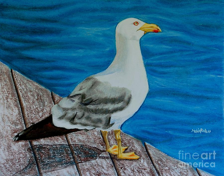 Animal Painting - Seagull On The Shore - Gaviota En La Costa by Melvin Rodriguez
