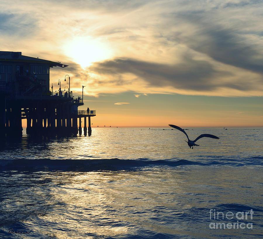 Seagull Photograph - Seagull Pier Sunrise Seascape C2 by Ricardos Creations