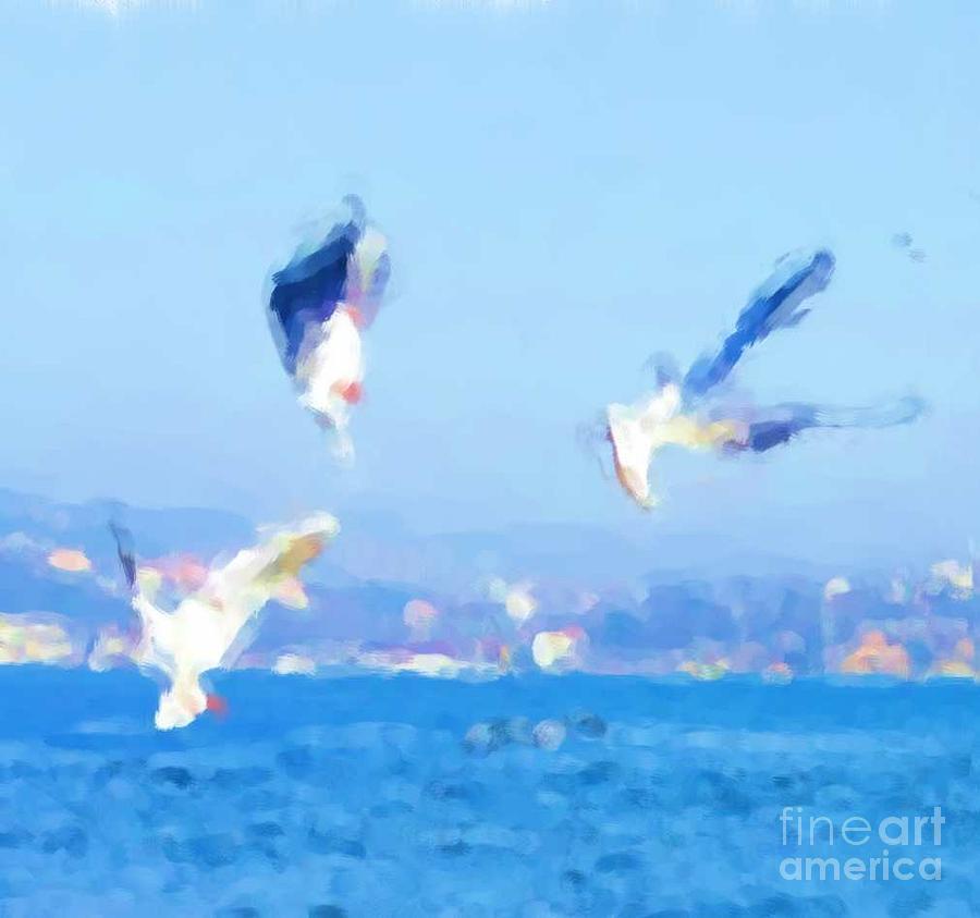 Seagulls by Duygu Kivanc