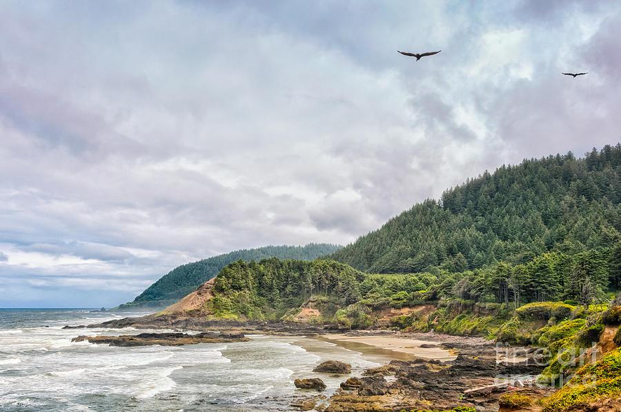 Seagulls Flying Along Oregon Coast Photograph