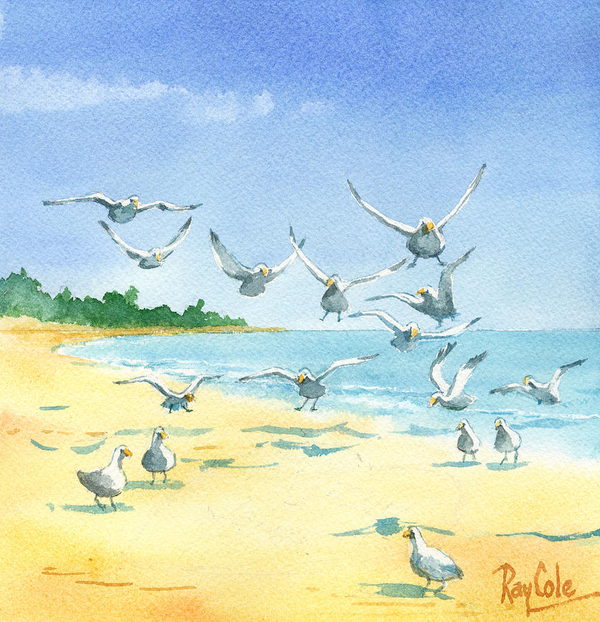Seagulls Painting - Seagulls by Ray Cole