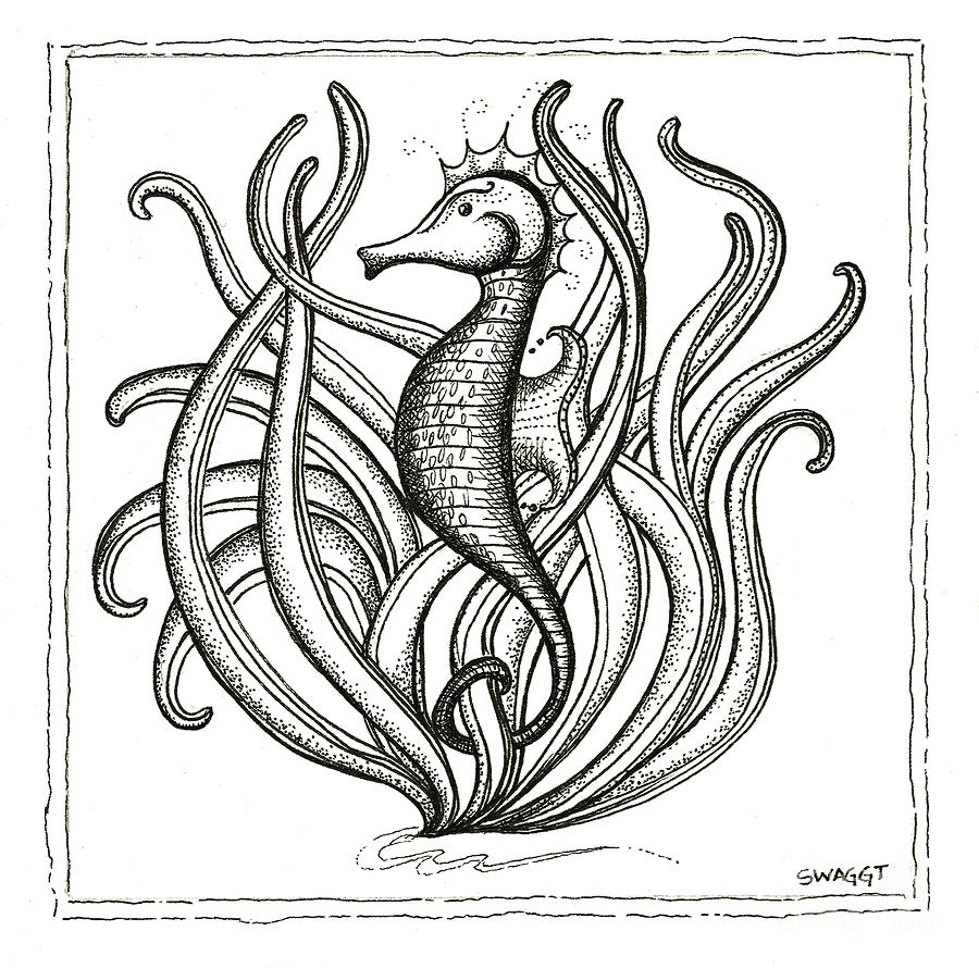 Beach House Drawing - Seahorse by Stephanie Troxell
