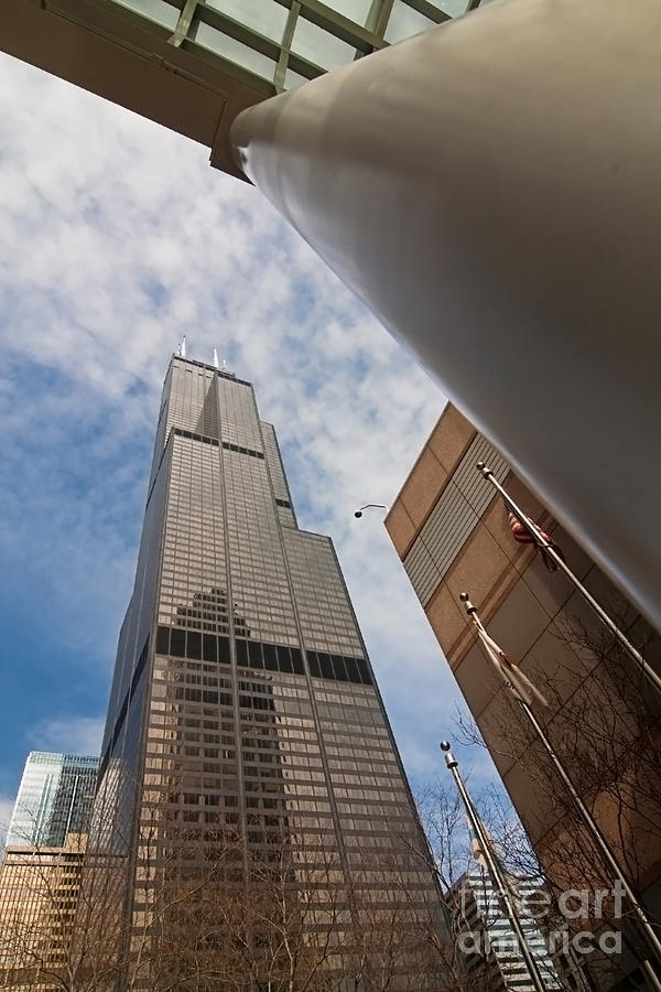 Sears Tower Photograph - Sears Tower From Across The Street by Sven Brogren