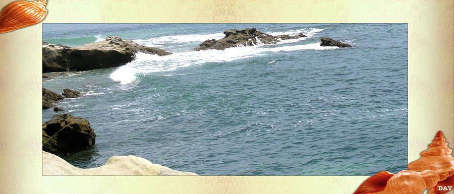 Sea Water Photograph - Seashell By The Seashore by Debra     Vatalaro