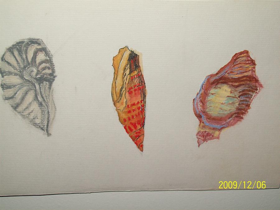Seashells Painting - Seashells By The Seashore by Nancy Caccioppo