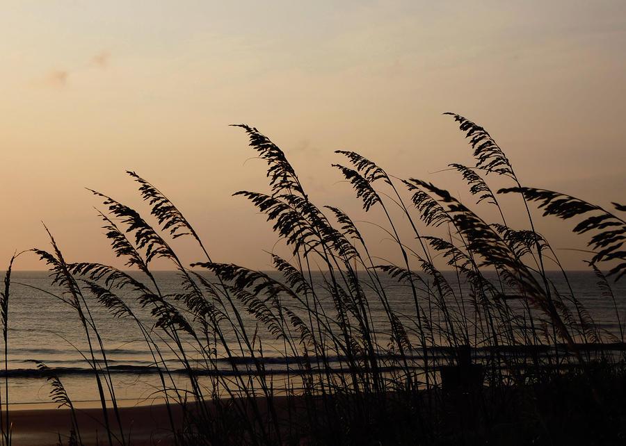 Ocean Photograph - Seaside Guardians by JAMART Photography