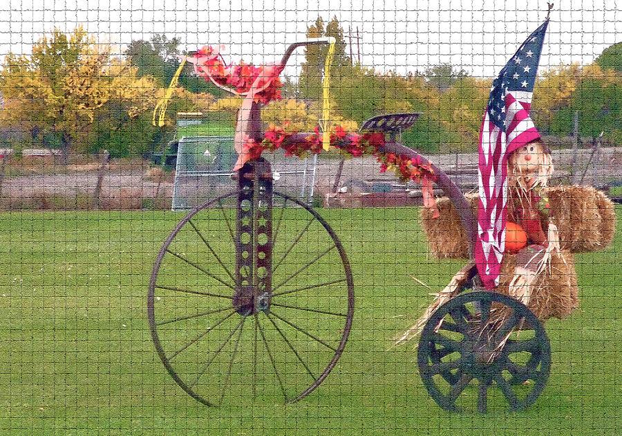Seasonal Photograph - Seasonal Antique Tricycle 1 by Steve Ohlsen