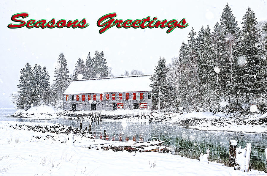 Seasons Greetings 1 by Marty Saccone