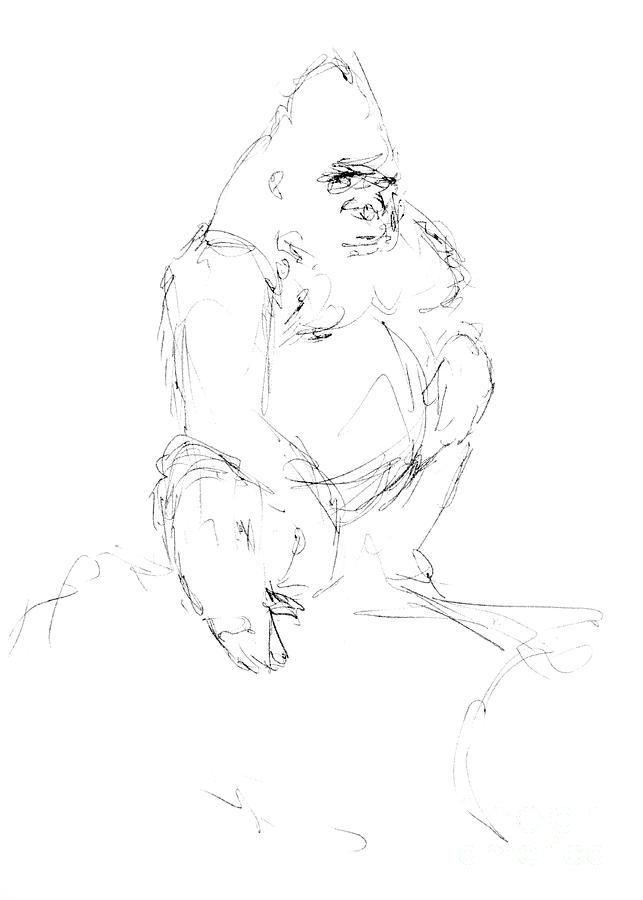 Draw Drawing - Seated Gorilla Sketch by Adam Long