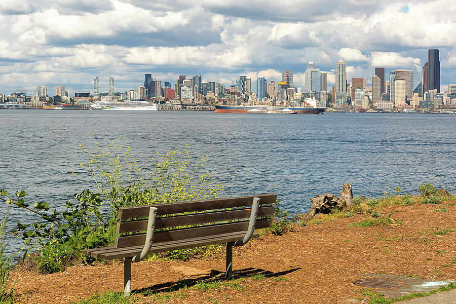 Seattle Photograph - Seattle City Skyline View From Alki Beach by David Gn