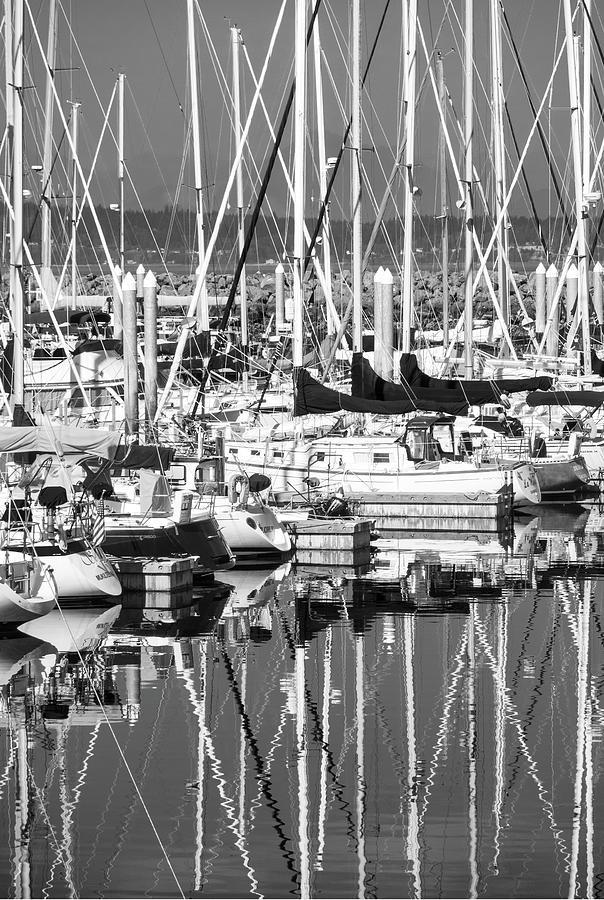 Seattle Photograph - Seattle Marina by Joel Cohen