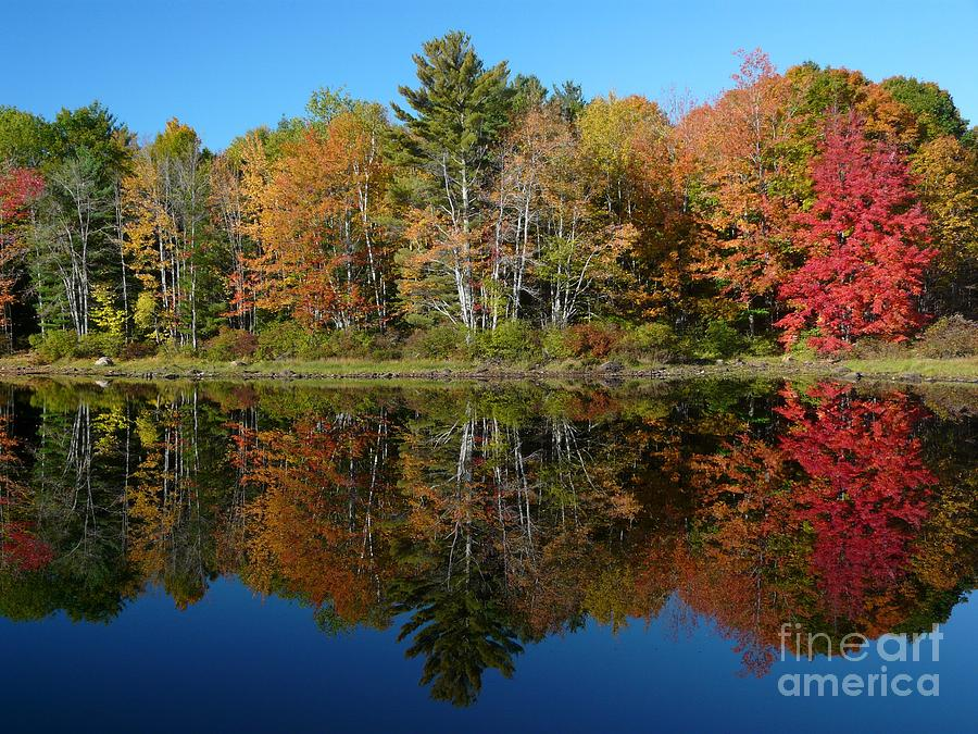 Maine Photograph - Sebago Lake Reflection by Christine Stack
