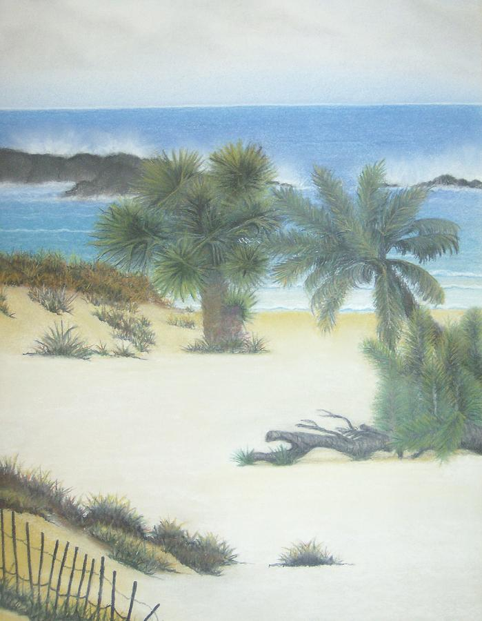 Beach Pastel - Secluded Beach by Linda Bennett