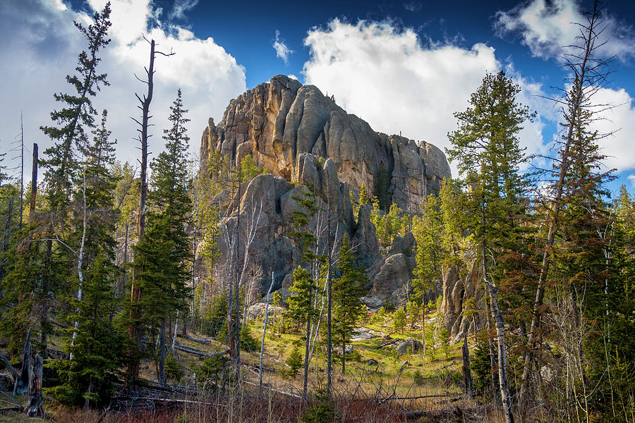 Custer State Park Photograph - Secluded By Spires by Evan Ludes