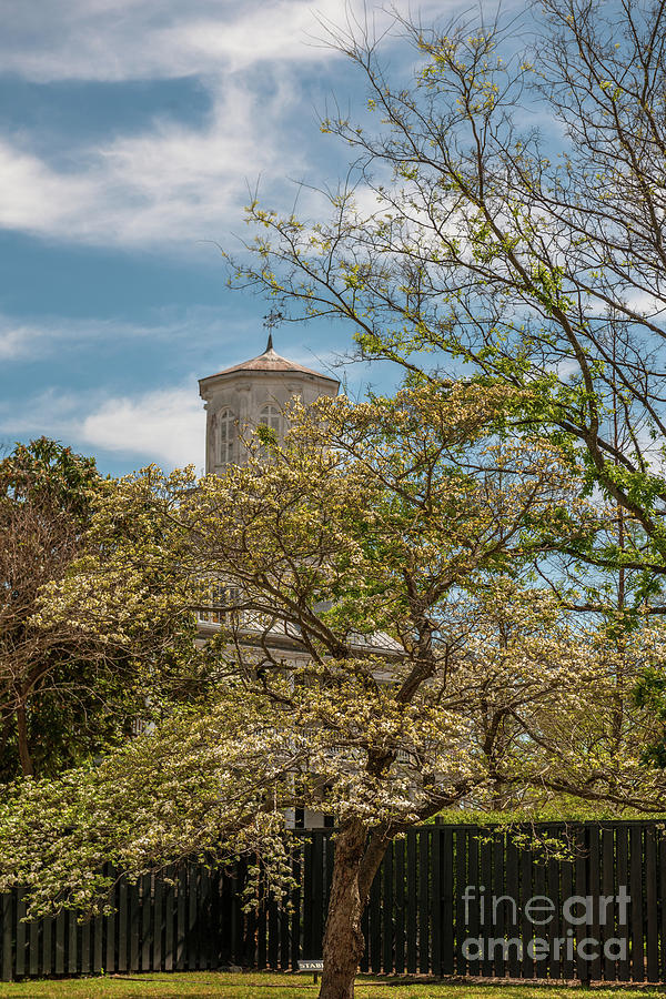 Second Presbyterian Church Steeple Photograph