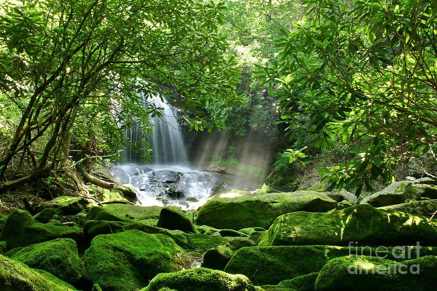 Waterfall Photograph - Secret Paradise - Hidden Appalachian Waterfall by Matt Tilghman