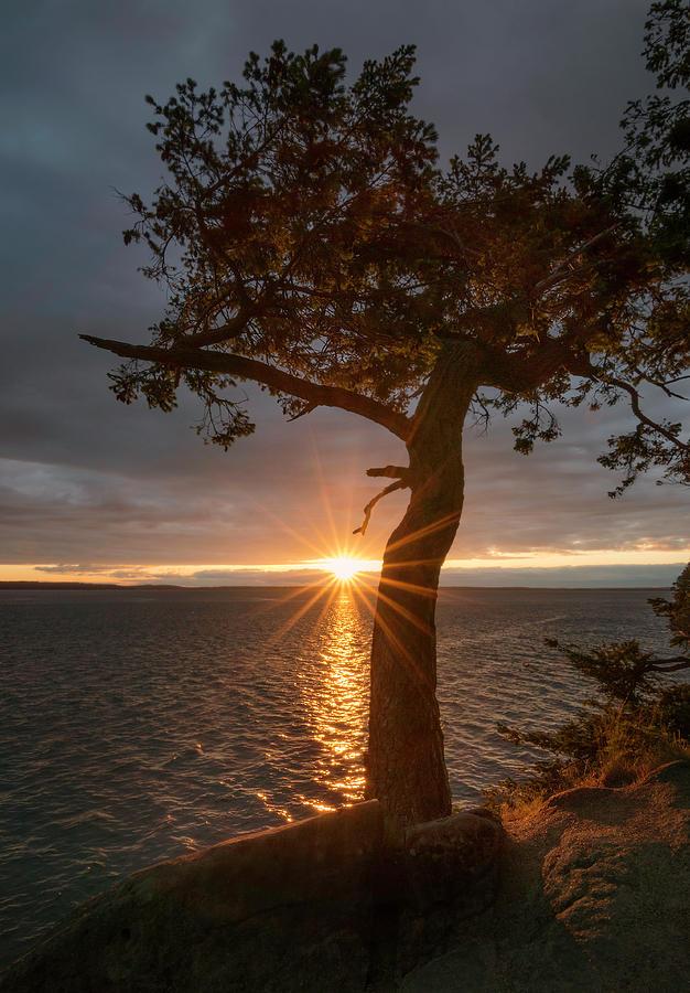 Bellingham Photograph - Secret Sunset by Ryan McGinnis