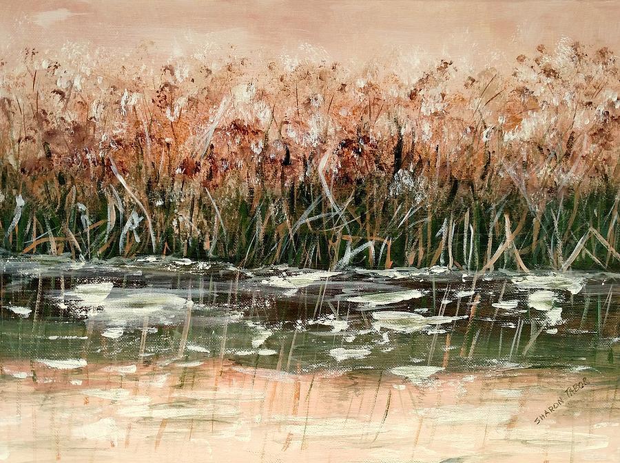 Sedge Painting - Sedge by Sharon Tabor