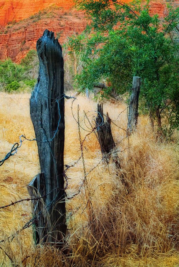 Fence Photograph - Sedona Fence And Field by Bob Coates
