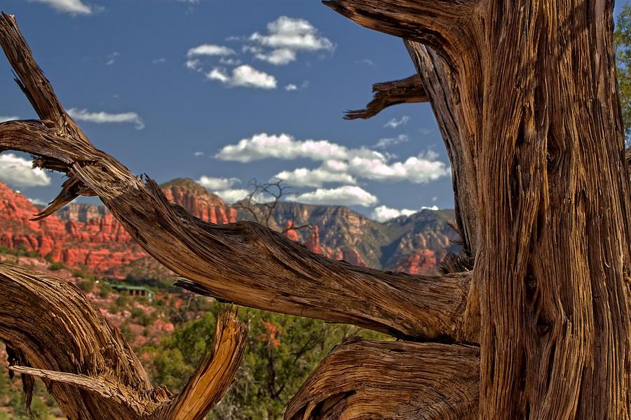 Arizona Photograph - Sedona Mountains Arizona by Waterdancer
