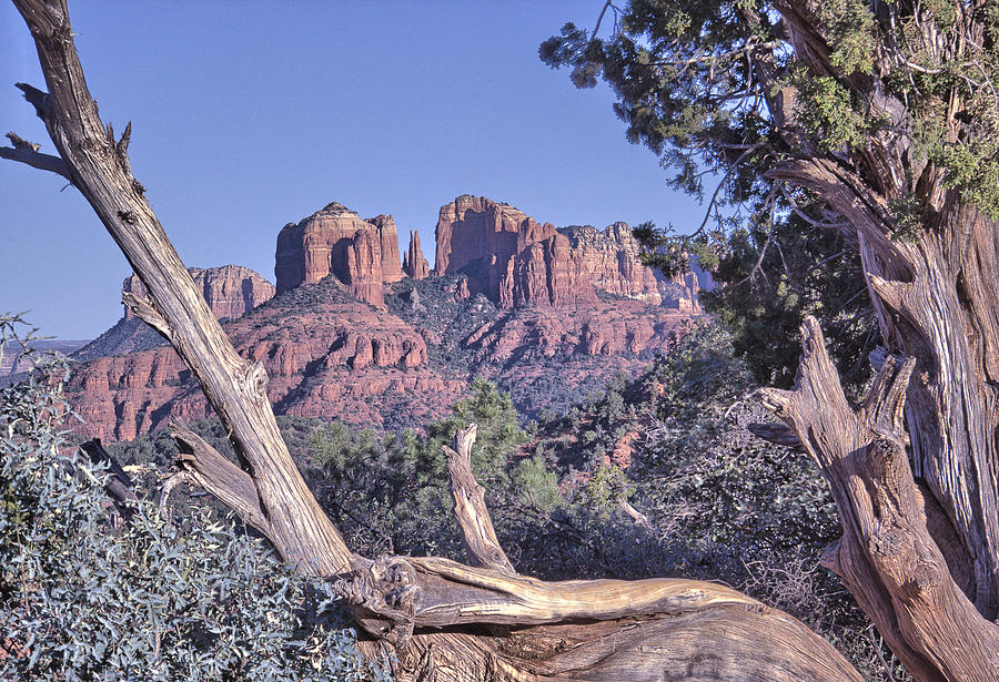 Sedona Photograph - Sedona Red Rocks Framed by David Kehrli