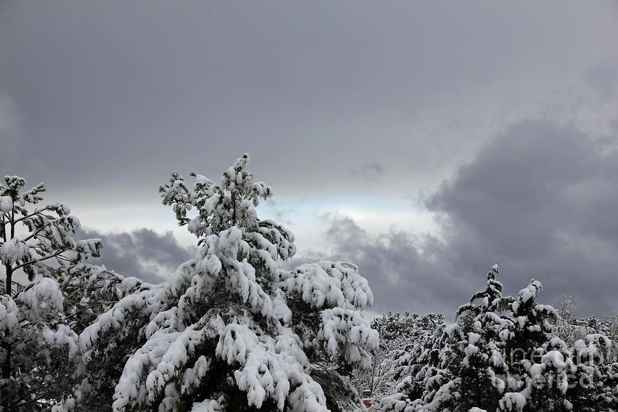 Sedona Skyline in Winter by David Frederick