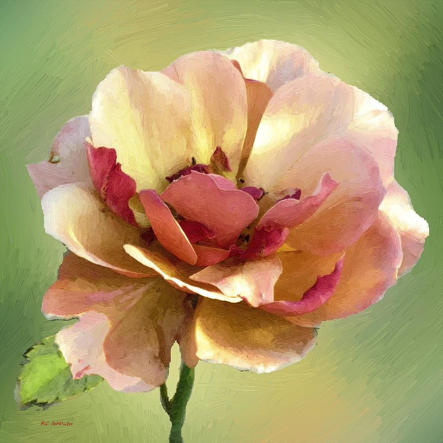 Rose Painting - Seductive by RC deWinter