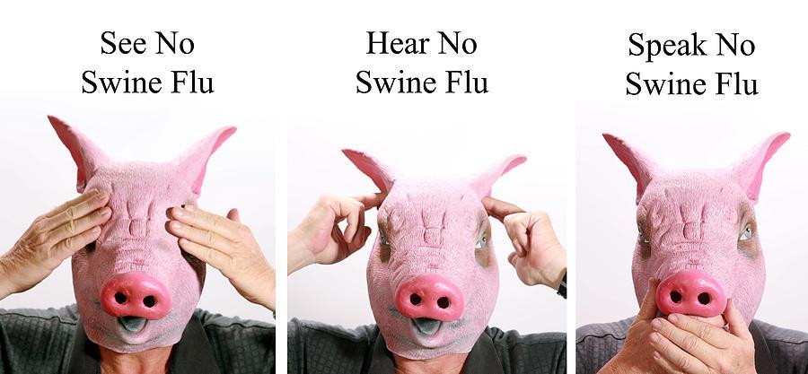 See Photograph - See No Swine Flu  Hear No Swine Flu   Speak No Swine Flu by Michael Ledray