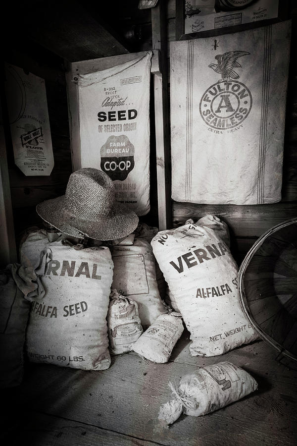 Seed Bags At The Farm by Debra and Dave Vanderlaan