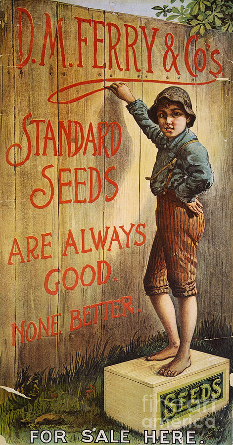 1890 Photograph - Seed Company Poster, C1890 by Granger