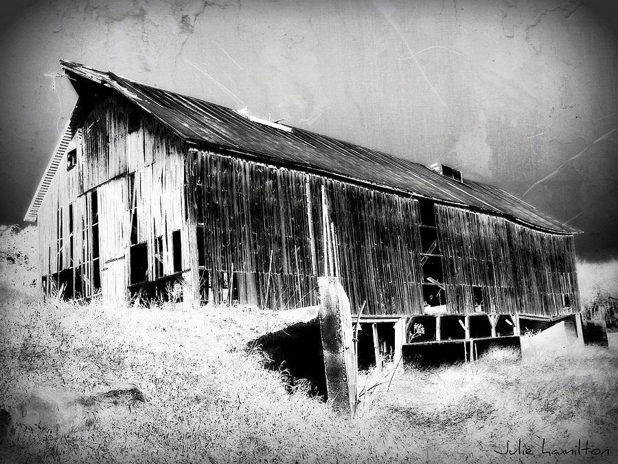 Barn Digital Art - Seen Better Days by Julie Hamilton