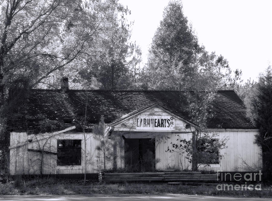 Black And White Photograph - Seen Better Days by Sue Melvin