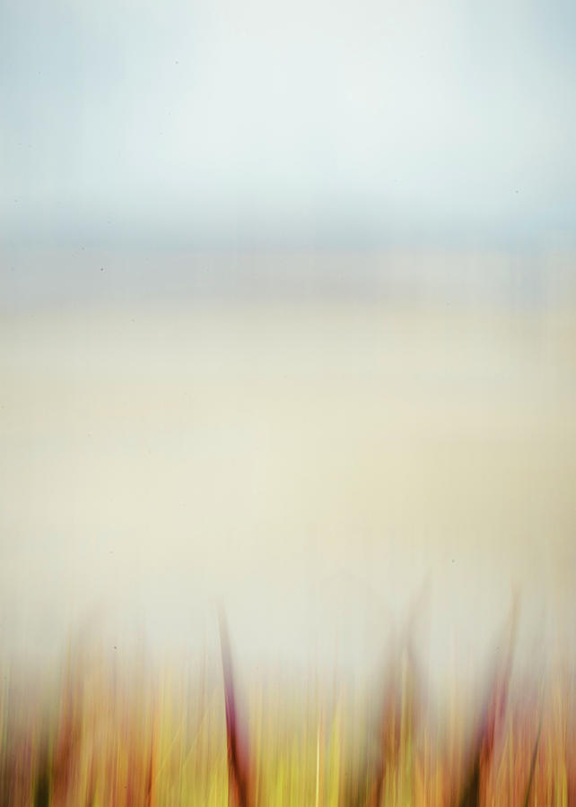Beach Photograph - Seilebost Beach Abstract by Phillips and Phillips